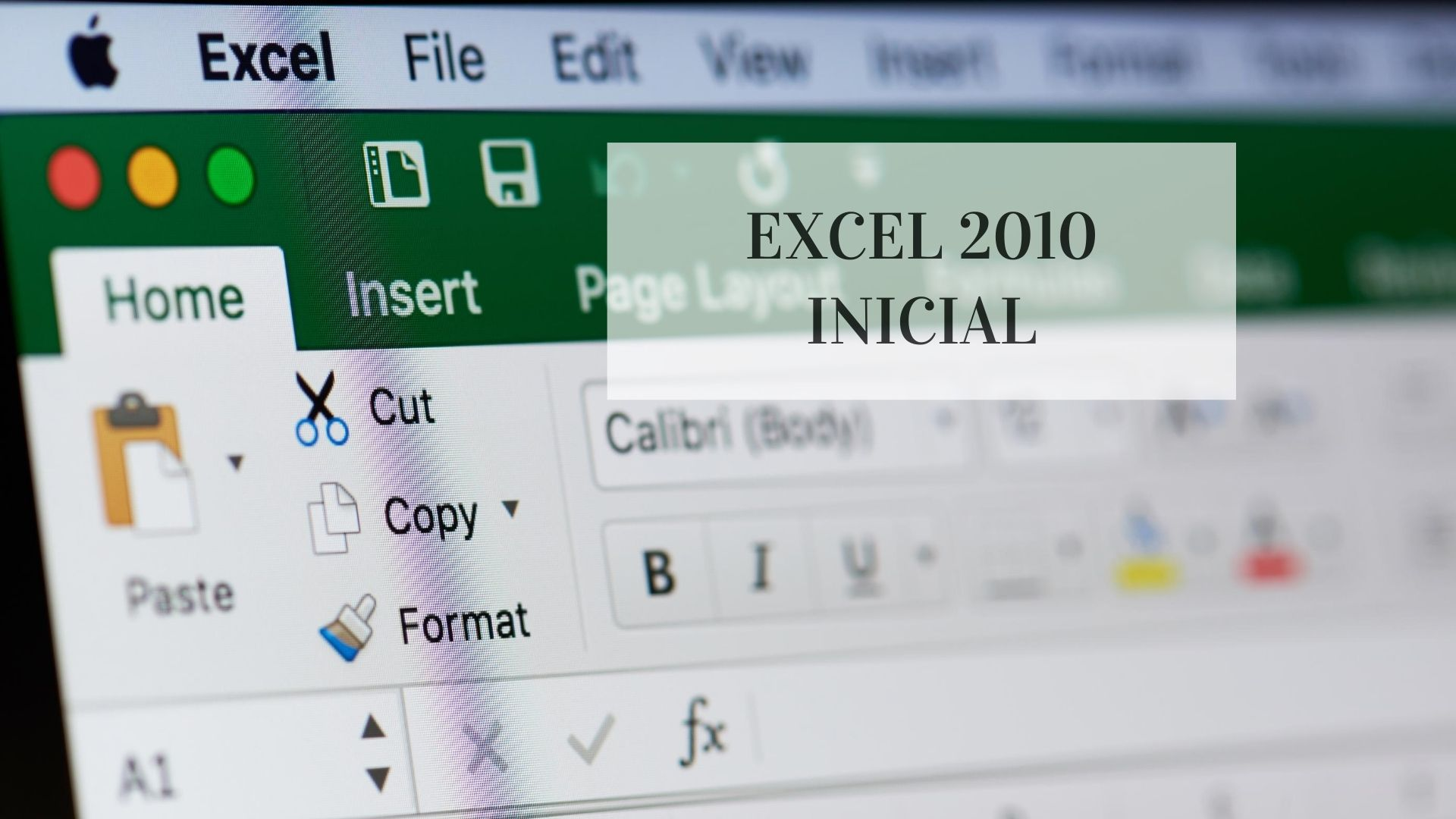 EXCEL 2010 INICIAL
